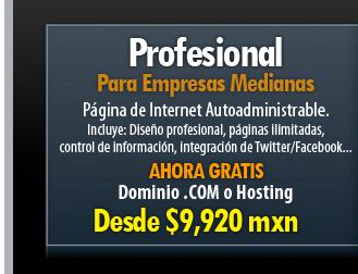 Plan Profesional para empresas que necesitan actualizar su información constantemente en Internet. Páginas autoadministrables.